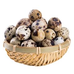 带壳 生鹌鹑蛋 500g