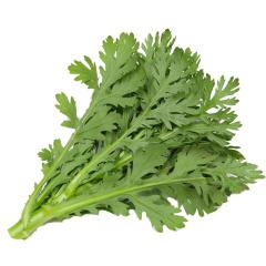 茼蒿菜 新鲜 小叶茼蒿 约500g
