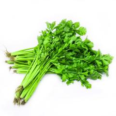 香芹  新鲜蔬菜约250g