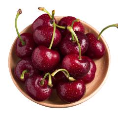 进口车厘子 新鲜水果 优质车厘子 约500g