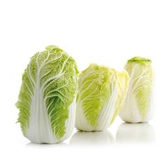 大白菜一个 约3.5斤 以上