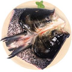 胖头鱼头 现杀当天鱼头 1300g至1400g