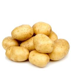 土豆 马铃薯 约2斤