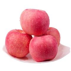 红富士苹果 苹果脆甜 正负50g 约1000g
