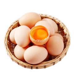 新鲜鸡蛋 10枚.